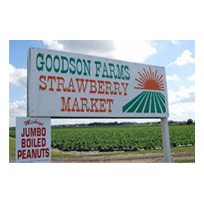 Goodson Farms